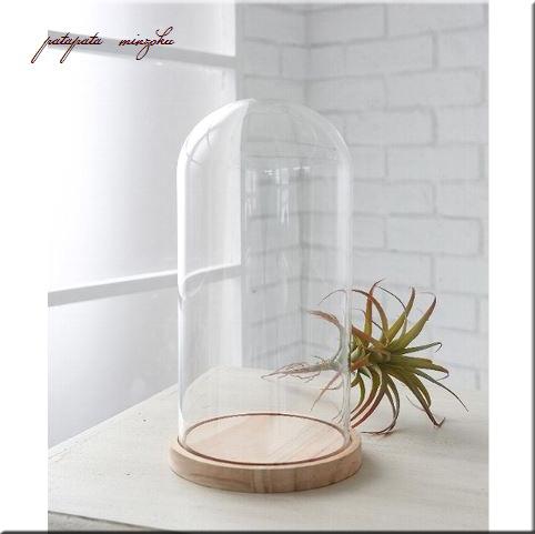 画像1: ガラスドーム トールドーム テラリウム 木製台付き